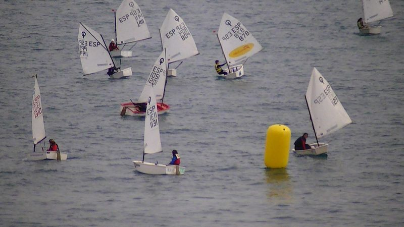 Optimist 4